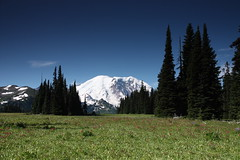 Grand Park, Mt Rainier National Park