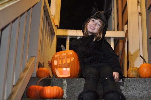 Vampire Bat and Her Robot Pumpkin