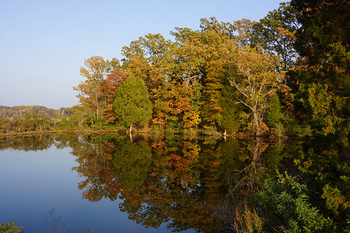 St. Mary's River in October