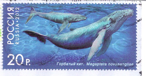 Russia Postage Stamp