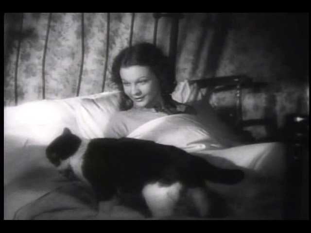 Vivien Leigh and a cat in St Martin's Lane