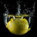 C(itrus limon)