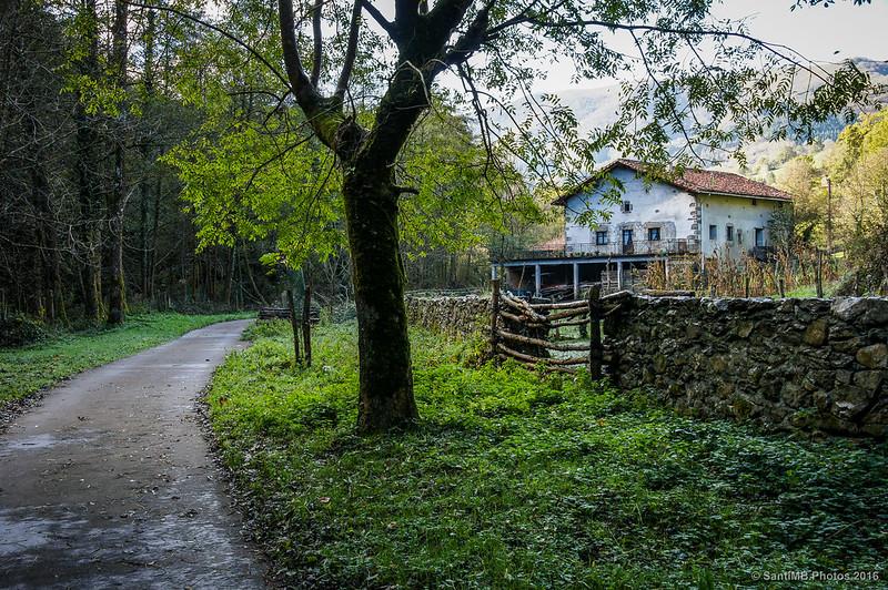 La casa del bosque