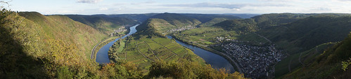 Neef, Mosel Valley panorama