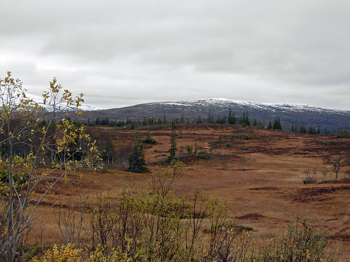 13oct2012 toward åre