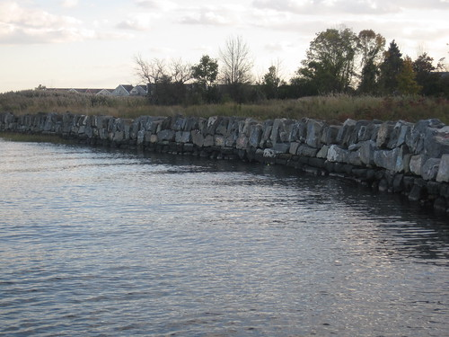 Seawall at Huntington Woods - Pelham Bay park 4316