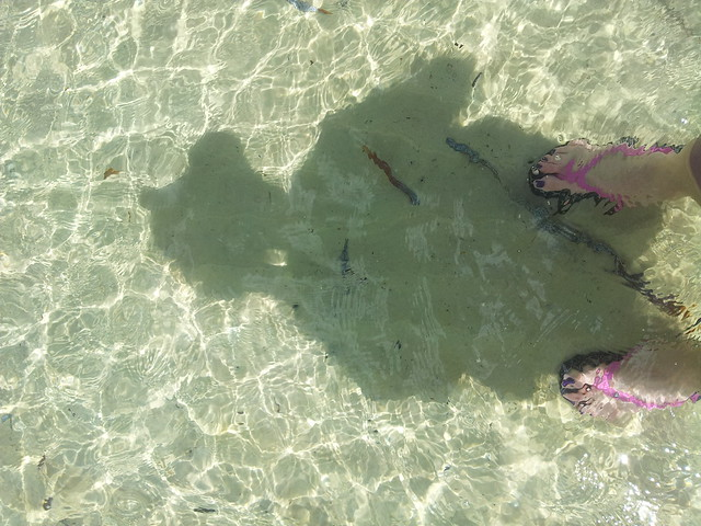 Salamander Beach