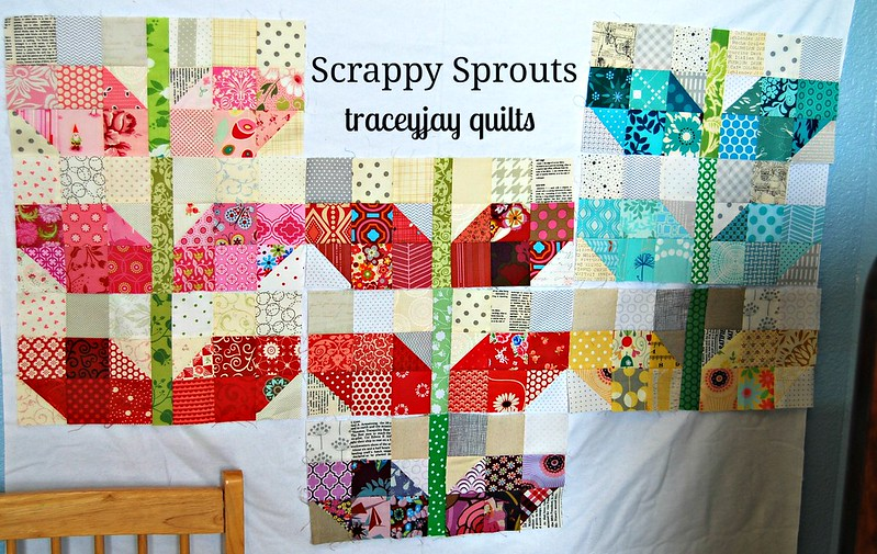 Scrappy Sprouts