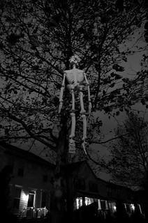 Halloween-0126