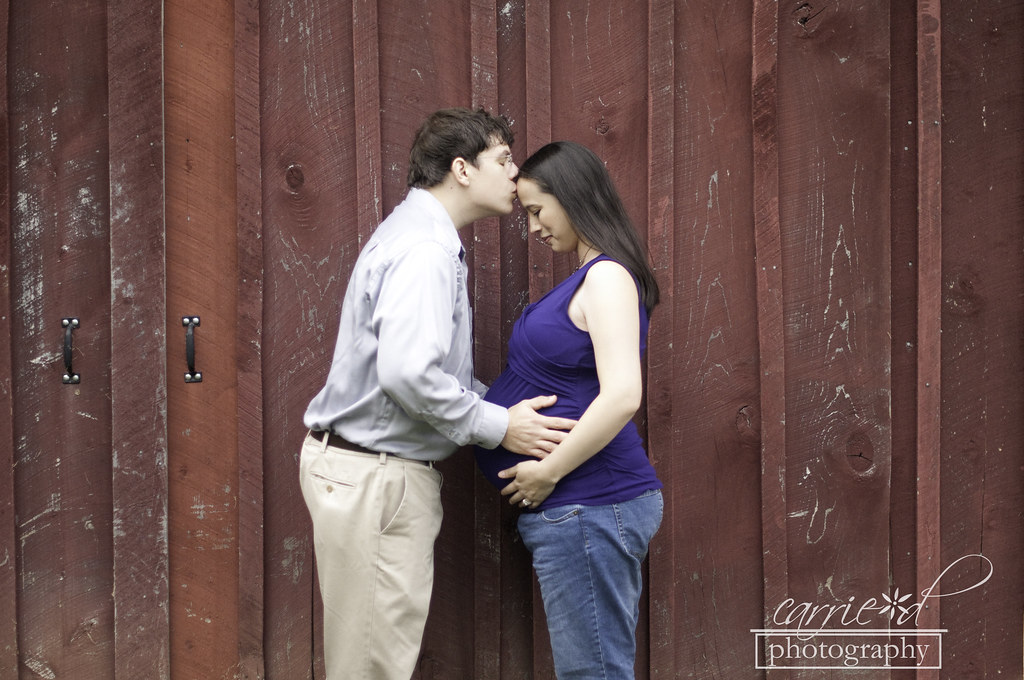 Harford County Maternity Photographer - Swan Harbor Farm Maternity Photographer - Wilmington DE Maternity Photographer - Pumpkin Maternity Photo - Christina 10-8-2012 164BLOG