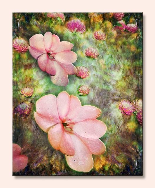 pivoines et fleurs de trèfles