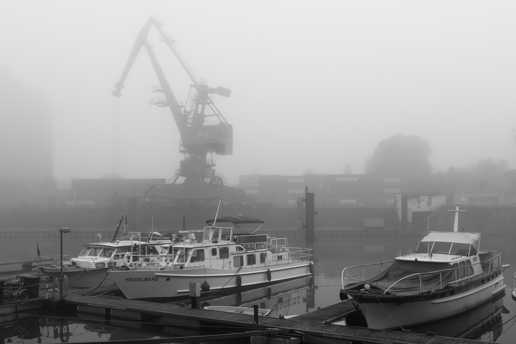 Harbour Life