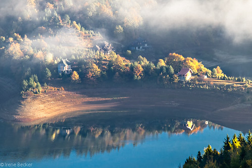 morning autumn trees reflection tree fall nature fog serbia autumnleaves hazy autumnfog balkan srbija jezero woter taramountain zaovine srpskoselo zaovinskojezero centralserbia mygearandme mygearandmepremium mygearandmebronze zaovinelake taranationalpark taraplanina заовинскојезеро imagesofserbia taranacionalnipark заовине novavezanja serbianlandscapes
