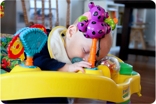 TB sleeping exersaucer web.jpg