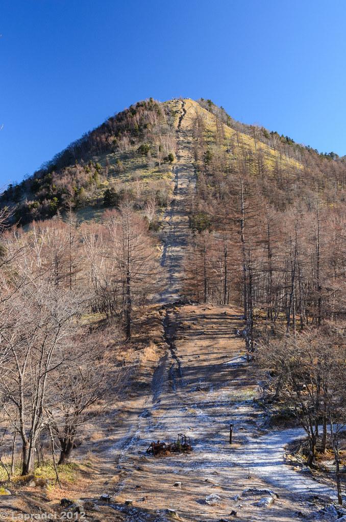 20121125 笠取山を見上げる