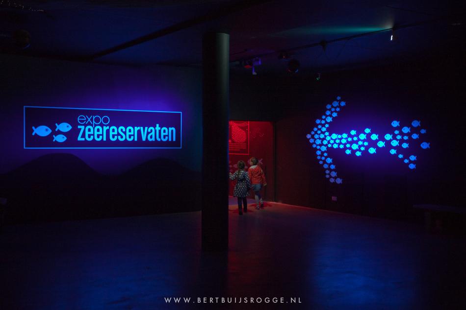 Blijdorp Expo