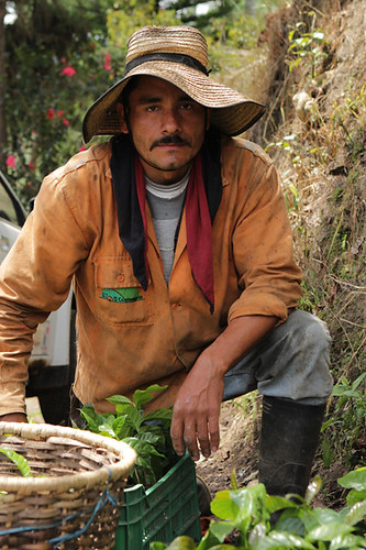 Campesino by Joaquin Cast.
