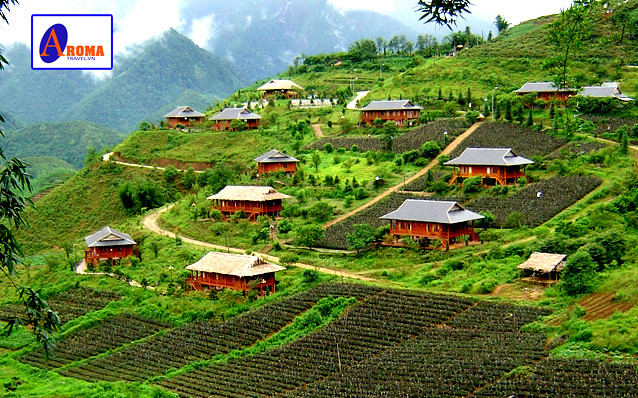 Canh Dep Sapa http://www.flickr.com/photos/aromtravel/8409390659/