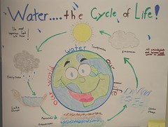 Water.... the Cycle of Life!