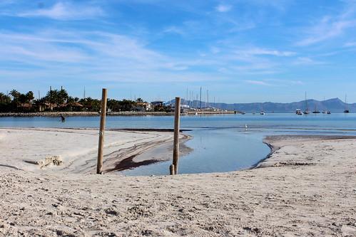Playa de Port d'Alcudia, elección de los viajeros en Tripadvisor