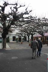 Looking for Fondue in Basel