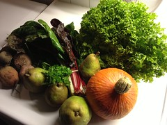 Amelishof organic CSA vegetables week 41, 2012