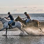Horses Riding Along beach at Porthmadog Wales