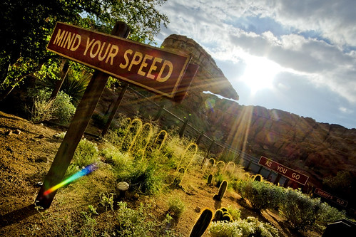 Disney California Adventure — Mind Your Speed