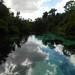 Reflections on the Weeki Wachee River by lawatha