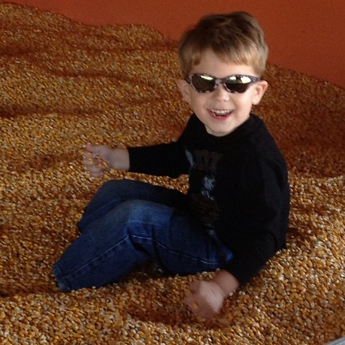 Too cool for the corn pit