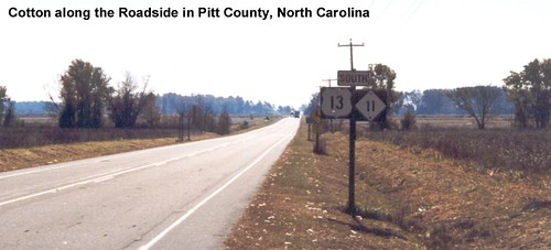 Pitt County NC