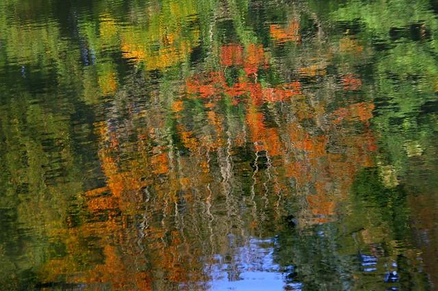 Une brise d'automne sur l'étang