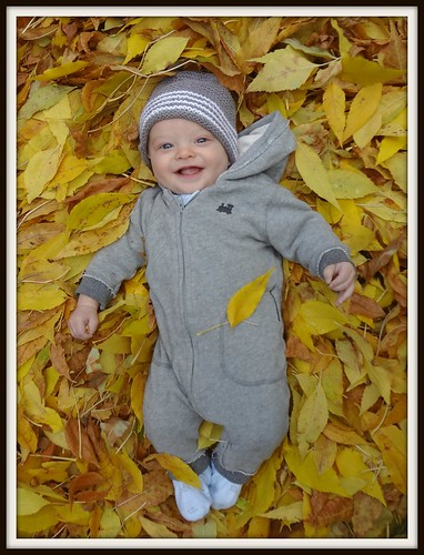 Luca in the Leaves2