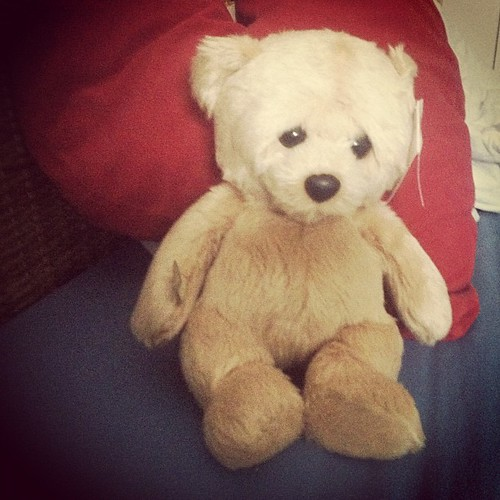 woe bear