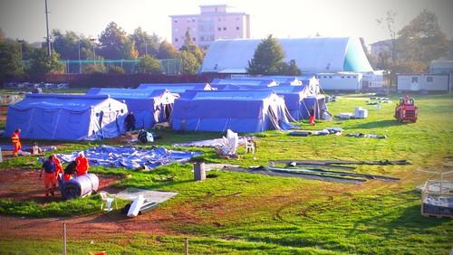 La chiusura del campo di Novi di Modena