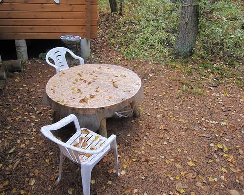 雨と落ち葉の庭 2012.10.3 by Poran111
