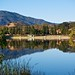 Small photo of Almaden Lake Park