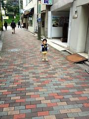 朝散歩 (2012/10/30)