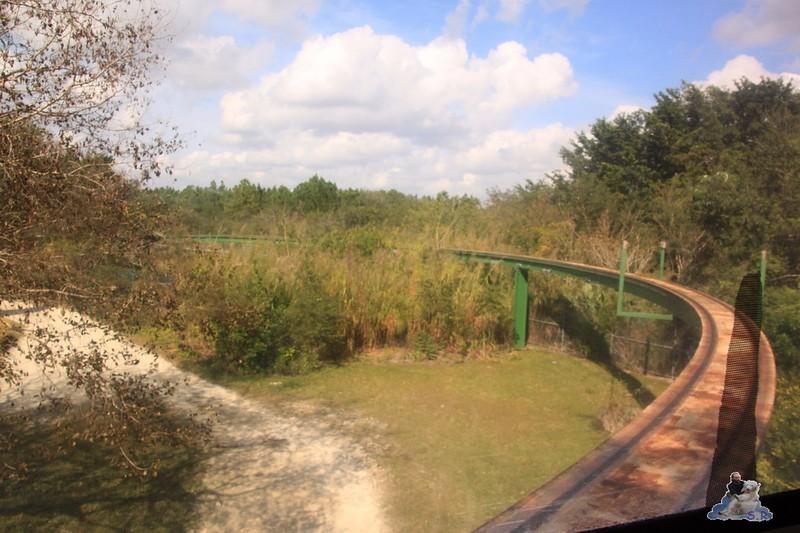 eine Monorailbahn gibt es auch