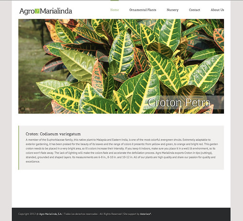 Agro Marialinda