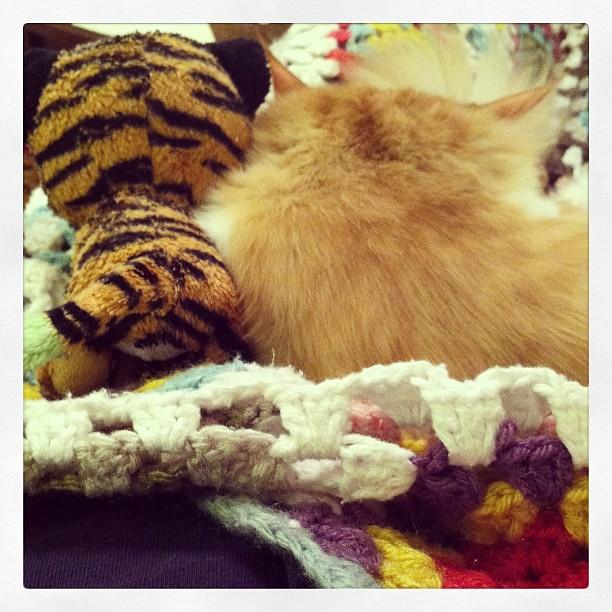 Lou & Puss 4-evah
