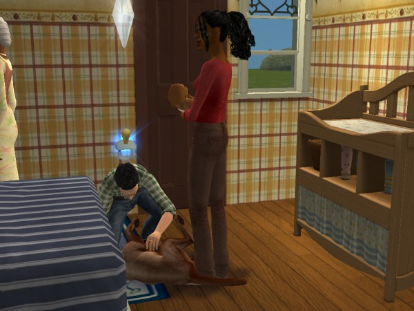 Mod The Sims - The Sims 2 - Family Portraits & Snapshots (v7)