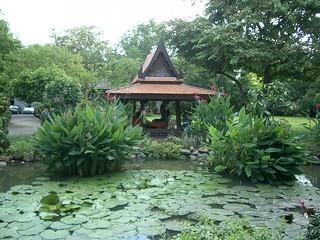 Lily pond and pavillion
