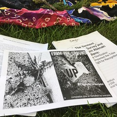 Look what showed up as a handout in the #socialjustice #herbalactivism class! groundupzine.wordpress.com by #grrrlzinesagogo at #newenglandwomensherbalconference
