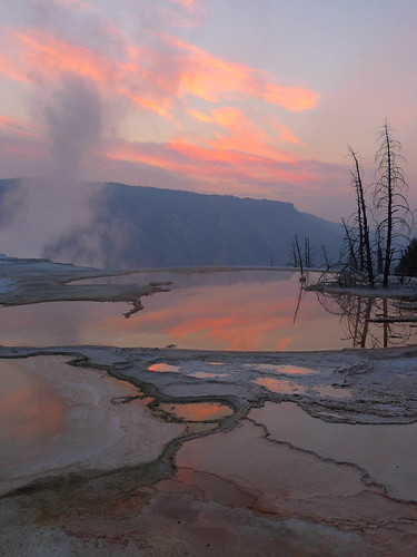 Sunrise at Mammoth Terraces, Yellowstone.