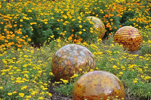Dallas Arboretum 10-13-12 (71)