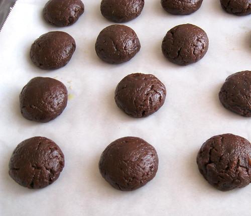 ıslak kurabiye