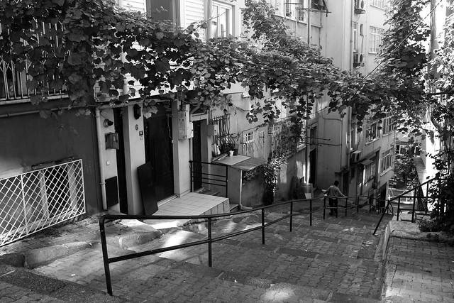 Vine-covered alley in Beyoglu, Istanbul