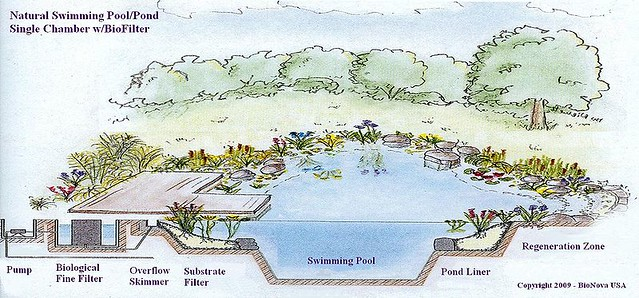 esquema piscina natural BioNova