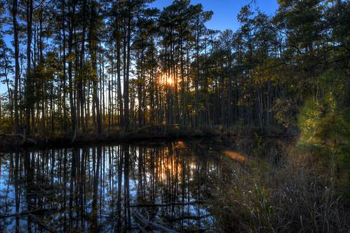 county blue trees sunset orange alex water md nikon maryland shore harriet blackwater eastern hdr talbot tubman d300s erkiletian